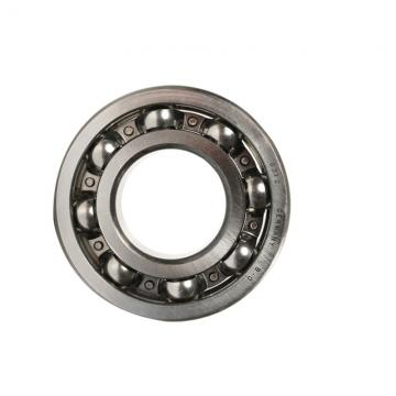 Angular Contact Ball Bearing 7313